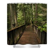 Walkway Into Paradise Shower Curtain