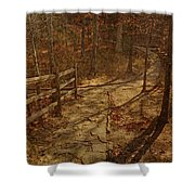 Walkway Through The Forest Shower Curtain