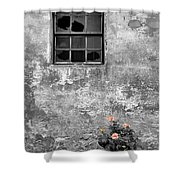Window And Flowers Shower Curtain