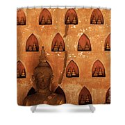 Wall Of Buddhas Shower Curtain