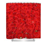 Wall Of Red Roses Shower Curtain