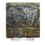 Ceiling And Wall Paintings Shower Curtain