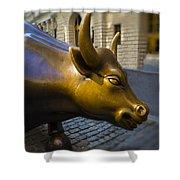 Wall Street Bull Market Shower Curtain