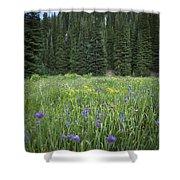 Wallowa Wildflowers Shower Curtain
