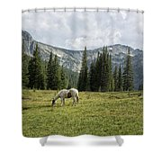 Wallowas - No. 2 Shower Curtain