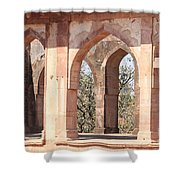 Walls And Nature Shower Curtain