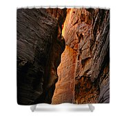 Wallstreet - The Narrows In Zion National Park. Shower Curtain