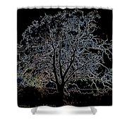 Walnut Tree Series Glowing Edges Shower Curtain