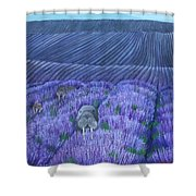 Walruses In A Field Of Lavender Shower Curtain