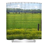 Wandering Hwy 51 Mississippi Shower Curtain
