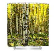 Wandering In The Woods  Shower Curtain