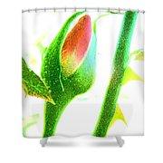 Wandering Rose Garden Shower Curtain