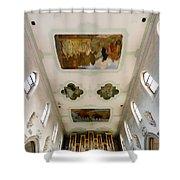 Wangen Organ And Ceiling Shower Curtain