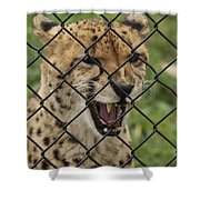 Wanting Freedom Shower Curtain