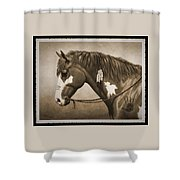 War Horse Old Photo Fx Shower Curtain by Crista Forest