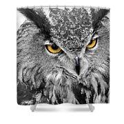 Watching You Owl Shower Curtain