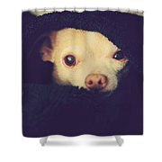 Warm And Cozy Shower Curtain