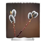 Warm And Fuzzy Shower Curtain