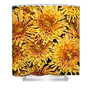 Warm And Sunny Yellows Golds And Oranges Shower Curtain