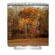 Warm Autumn Glow Shower Curtain