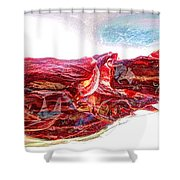 Warped Dried Tomatoes Shower Curtain