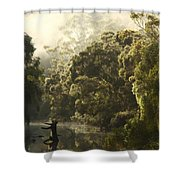 Warren River - Western Australia 2am-113012 Shower Curtain