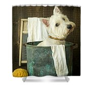 Wash Day Shower Curtain
