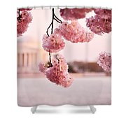 Washington Dc Cherry Blossoms Shower Curtain