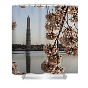 Washington Monument Framed By Blossoms Shower Curtain
