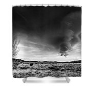 Washoe Clouds Shower Curtain