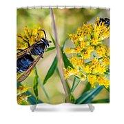 Wasp 2 Shower Curtain
