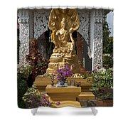 Wat Luang Buddha Image Dthu029 Shower Curtain