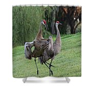 Watch Your Parents Shower Curtain by Carol Groenen