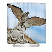 Watchful Eagle Shower Curtain
