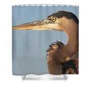 Watchful Heron Shower Curtain