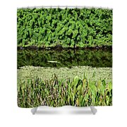 Water And Green Shower Curtain