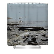 Water And Rocks Shower Curtain