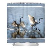 Water Ballet  Shower Curtain
