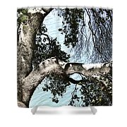 Water Beyond The Tree Shower Curtain