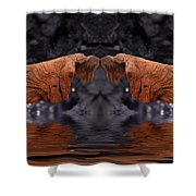Water Blessing Shower Curtain