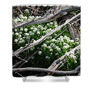 Water Cress Shower Curtain