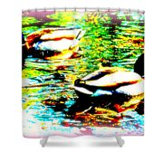 So Water Dance Is For Dancing Ducks  Shower Curtain