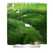 Water Diamonds Shower Curtain