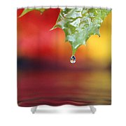 Water Dripping Shower Curtain
