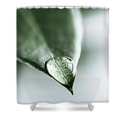 Water Drop On Leaf Shower Curtain