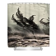 Water Fronds Shower Curtain