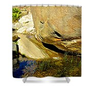 Water In Oasis On Borrego Palm Canyon Trail In Anza-borrego Desert Sp Campground-ca  Shower Curtain