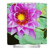 Water Lilies 003 Shower Curtain