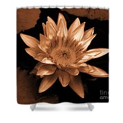 Water Lilies 012 Shower Curtain