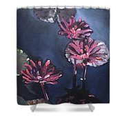 Water Lilies At Sunset Shower Curtain